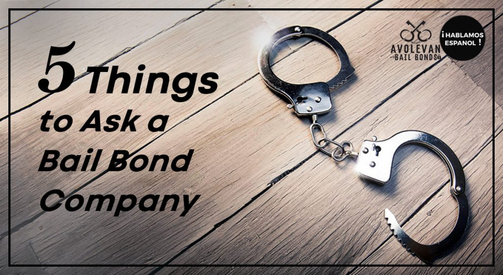 5 Things to ask a bail bond company